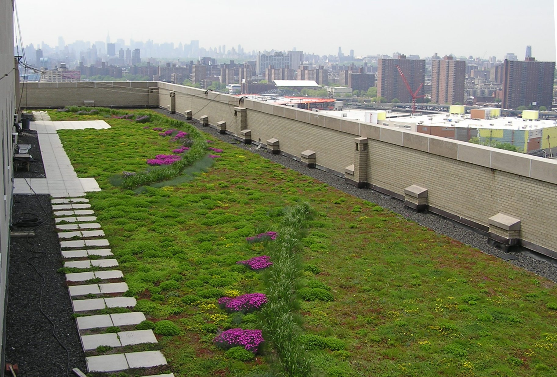 Green Roof Easy Home Decorating Ideas