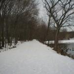 WinterVCP1.JPG (396 KB)